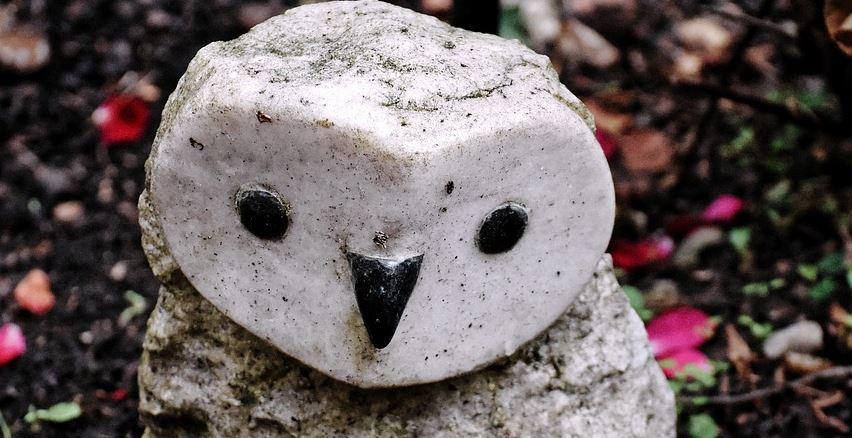 animal de piedra
